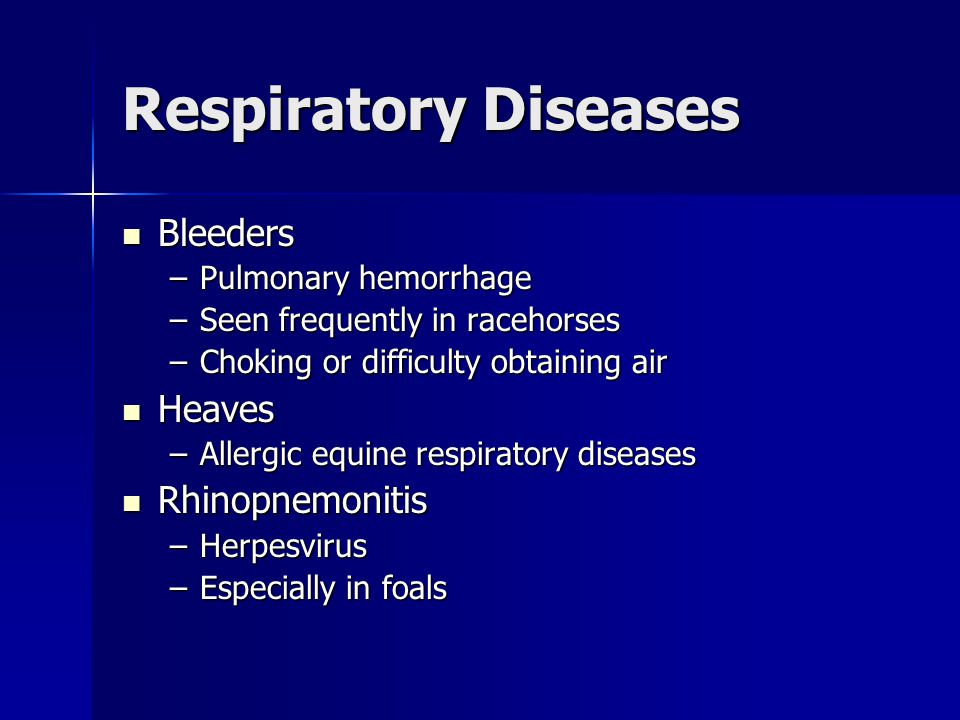 Respiratory Diseases Bleeders Bleeders –Pulmonary hemorrhage –Seen frequently in racehorses –Choking or difficulty obtaining air Heaves Heaves –Allergic equine respiratory diseases Rhinopnemonitis Rhinopnemonitis –Herpesvirus –Especially in foals