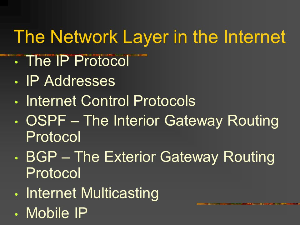 The Network Layer in the Internet The IP Protocol IP Addresses Internet Control Protocols OSPF – The Interior Gateway Routing Protocol BGP – The Exterior Gateway Routing Protocol Internet Multicasting Mobile IP IPv6