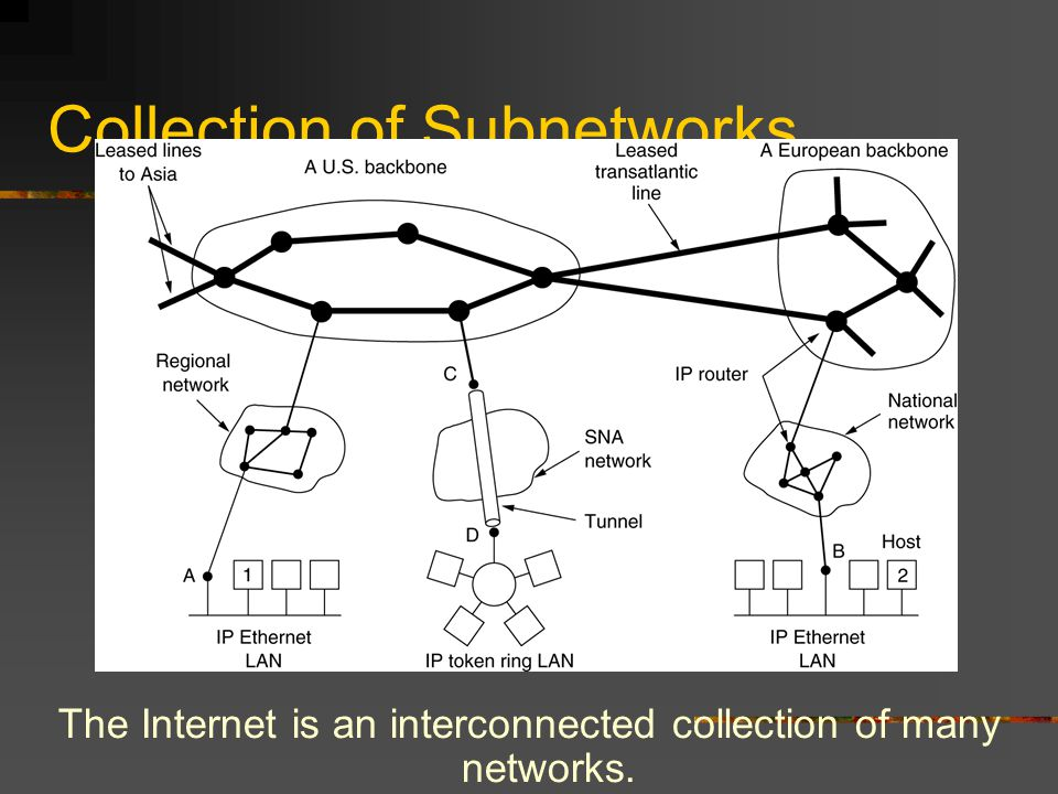 Collection of Subnetworks The Internet is an interconnected collection of many networks.