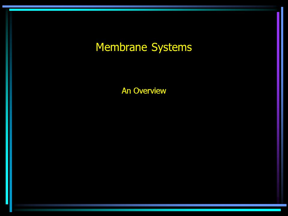 Membrane Systems An Overview