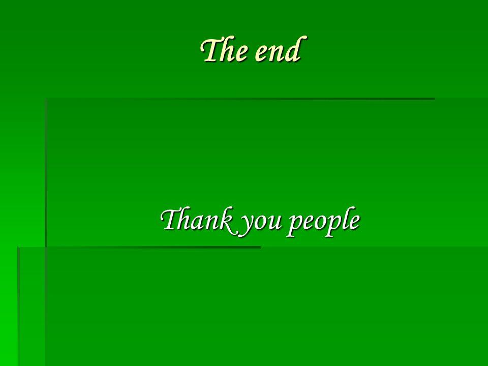 The end The end Thank you people Thank you people