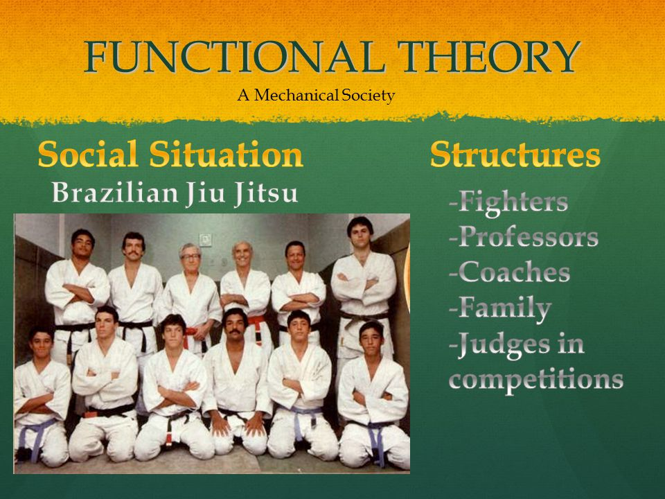 FUNCTIONAL THEORY A Mechanical Society
