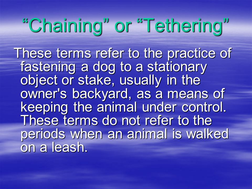 Chaining or Tethering These terms refer to the practice of fastening a dog to a stationary object or stake, usually in the owner s backyard, as a means of keeping the animal under control.