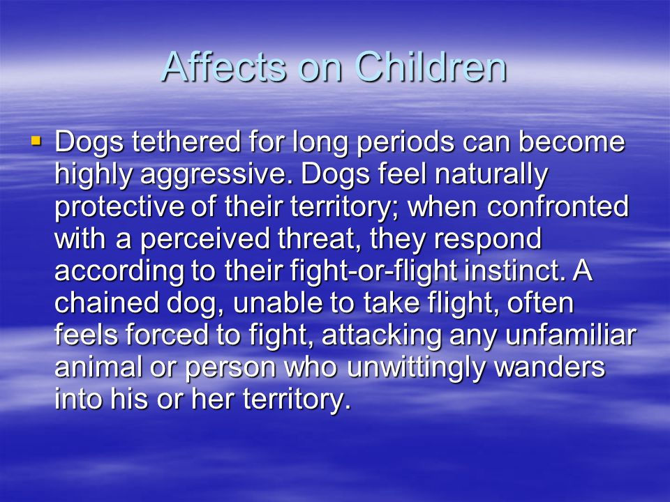 Affects on Children  Dogs tethered for long periods can become highly aggressive.