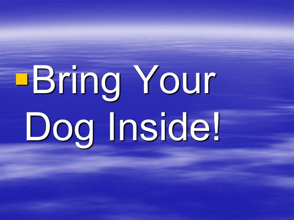 BBBBring Your Dog Inside!