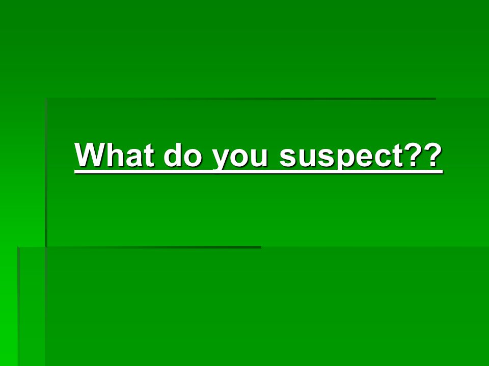 What do you suspect??