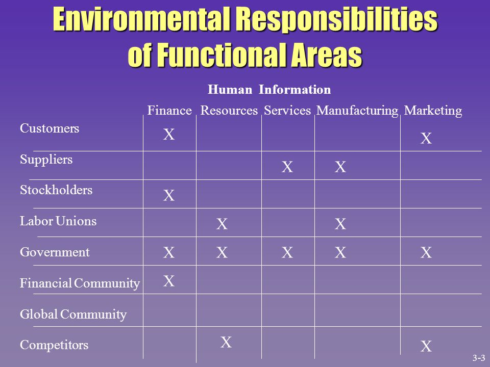 Environmental Responsibilities of Functional Areas Customers Suppliers Stockholders Labor Unions Government Financial Community Global Community Compe