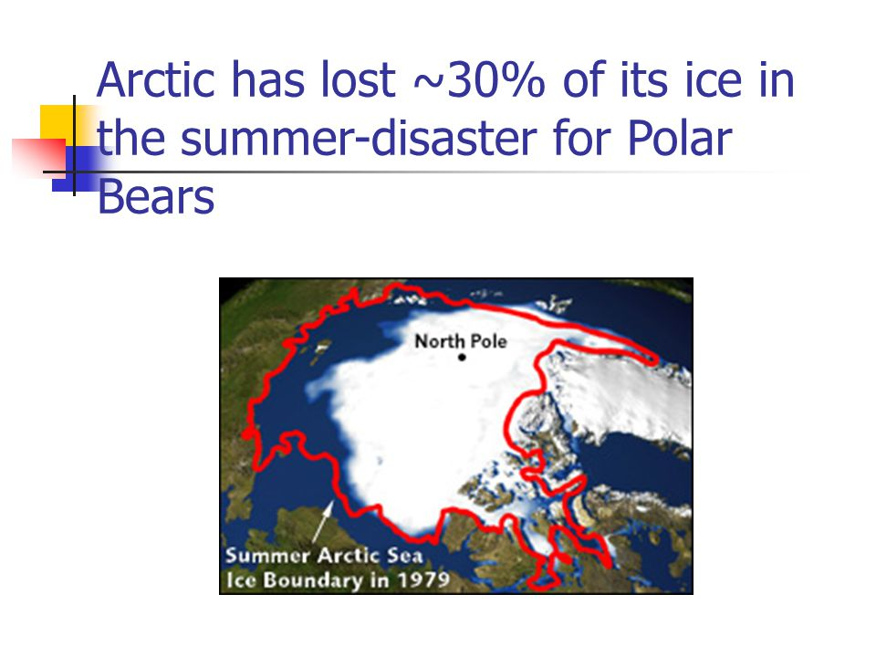 Arctic has lost ~30% of its ice in the summer-disaster for Polar Bears