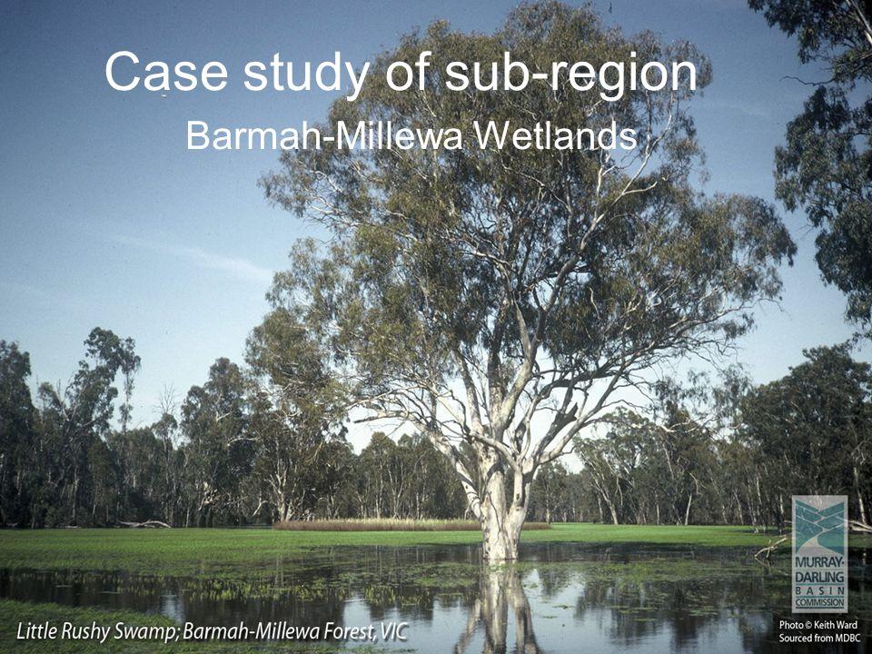 Case study of sub-region Barmah-Millewa Wetlands