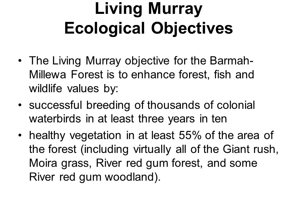 Living Murray Ecological Objectives The Living Murray objective for the Barmah- Millewa Forest is to enhance forest, fish and wildlife values by: successful breeding of thousands of colonial waterbirds in at least three years in ten healthy vegetation in at least 55% of the area of the forest (including virtually all of the Giant rush, Moira grass, River red gum forest, and some River red gum woodland).