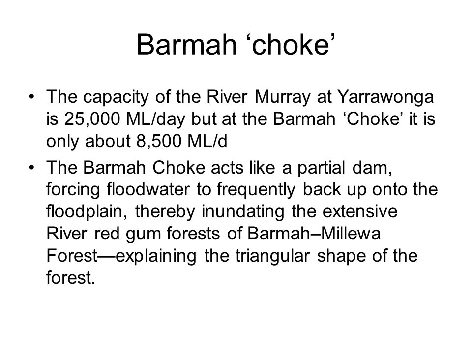Barmah 'choke' The capacity of the River Murray at Yarrawonga is 25,000 ML/day but at the Barmah 'Choke' it is only about 8,500 ML/d The Barmah Choke acts like a partial dam, forcing floodwater to frequently back up onto the floodplain, thereby inundating the extensive River red gum forests of Barmah–Millewa Forest—explaining the triangular shape of the forest.