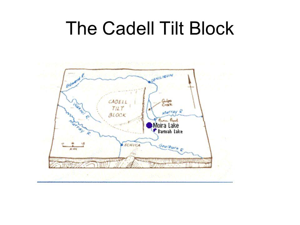 The Cadell Tilt Block