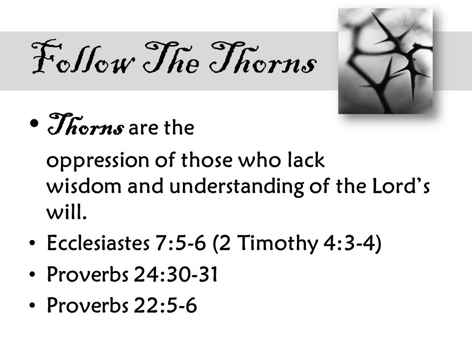Follow The Thorns Thorns are the oppression of those who lack wisdom and understanding of the Lord's will.