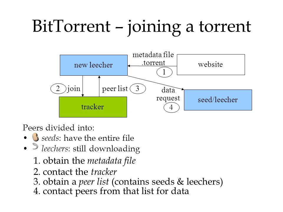 new leecher BitTorrent – joining a torrent Peers divided into: seeds : have the entire file leechers : still downloading data request peer list metada