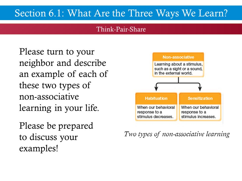 Please turn to your neighbor and describe an example of each of these two types of non-associative learning in your life.