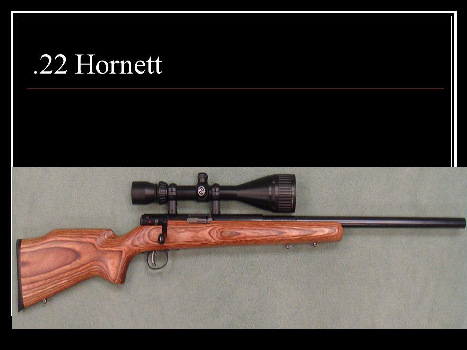.22 Hornett