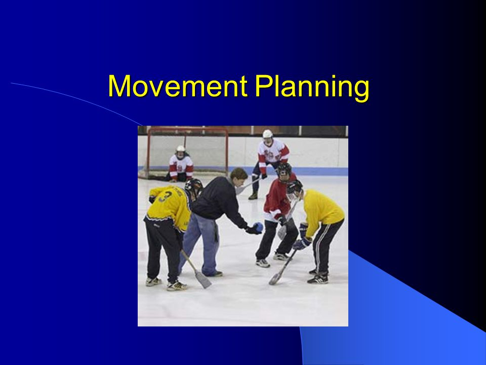Movement Planning