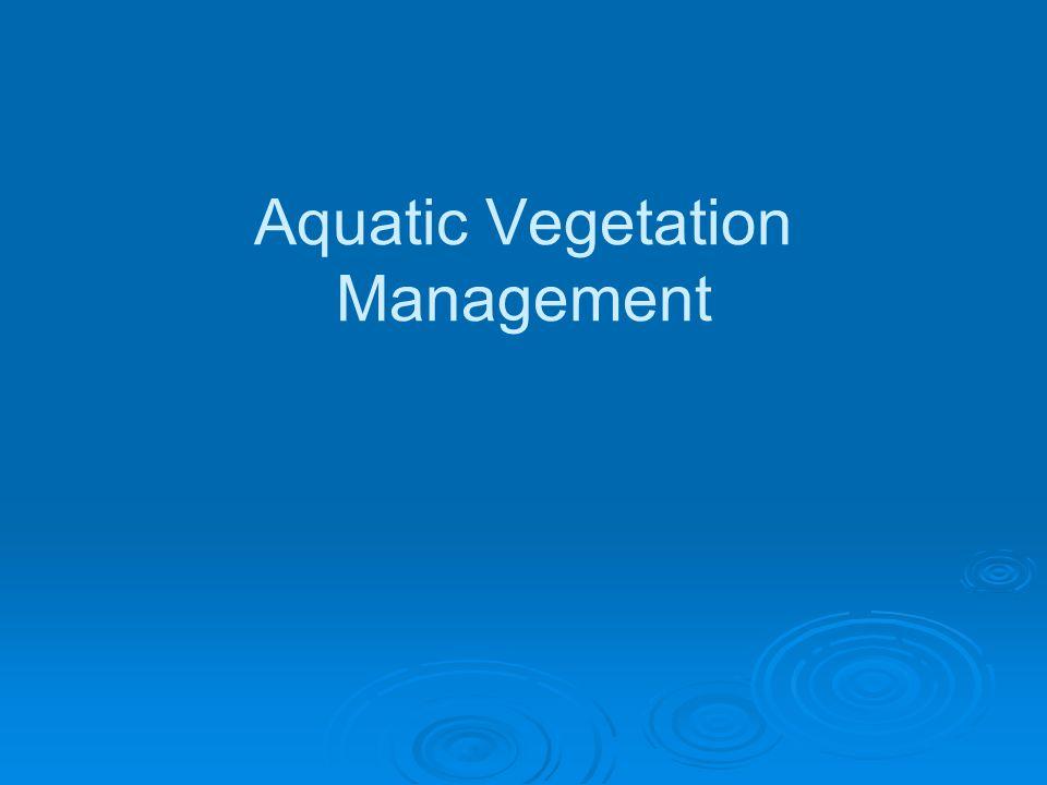 Aquatic Vegetation Management