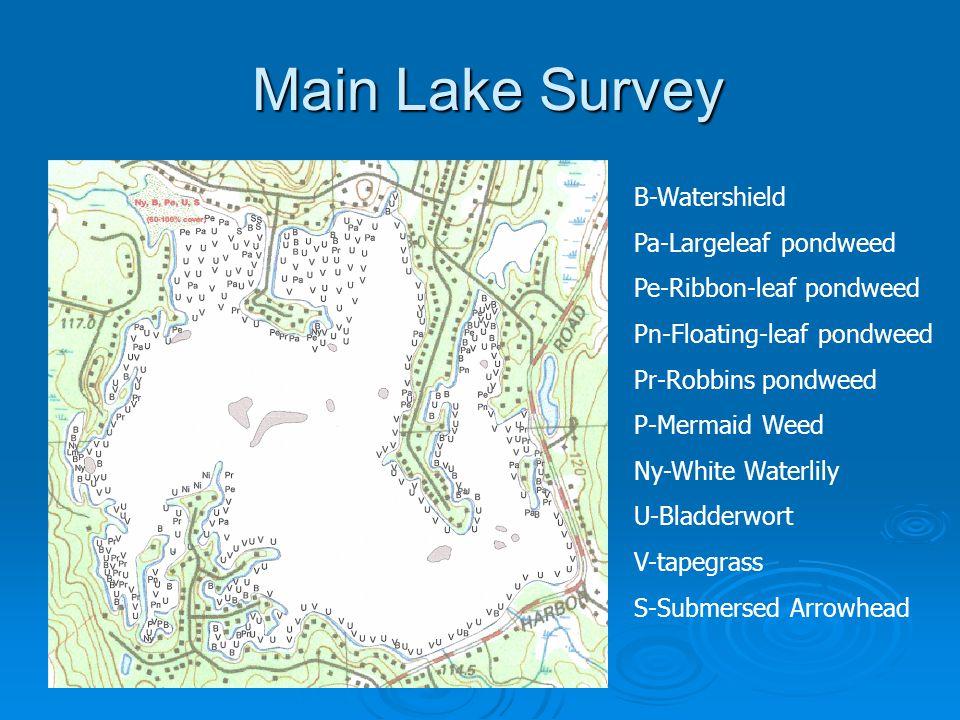 Main Lake Survey B-Watershield Pa-Largeleaf pondweed Pe-Ribbon-leaf pondweed Pn-Floating-leaf pondweed Pr-Robbins pondweed P-Mermaid Weed Ny-White Wat