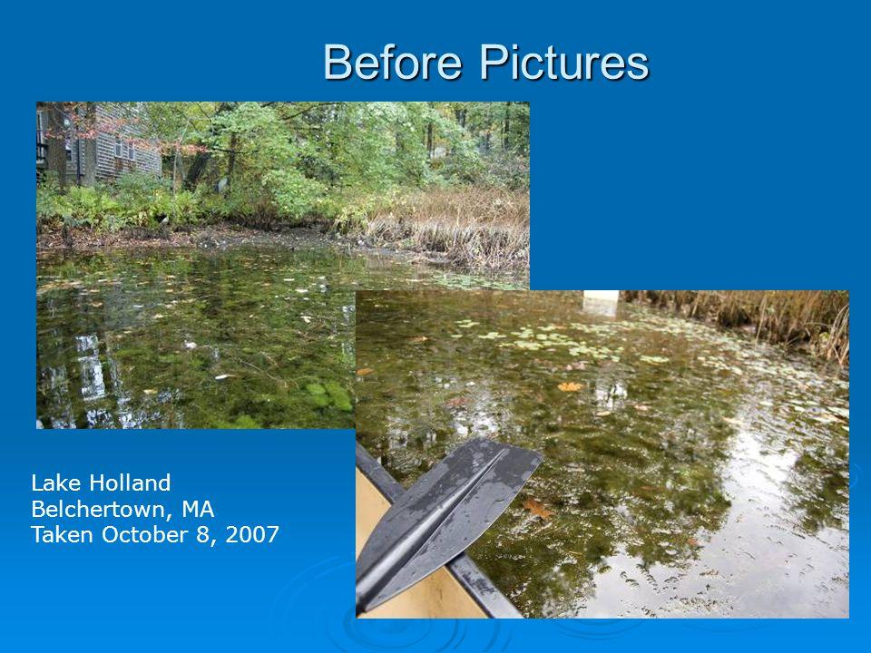 Before Pictures Lake Holland Belchertown, MA Taken October 8, 2007