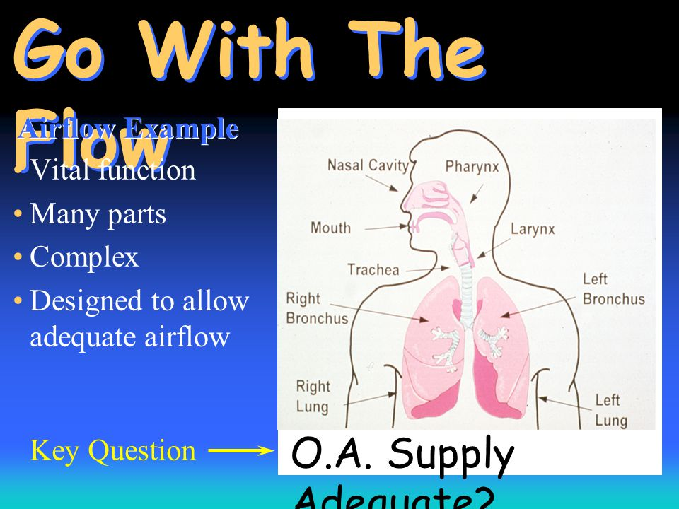 O.A. Supply Adequate? Go With The Flow Vital function Many parts Complex Designed to allow adequate airflow Airflow Example Key Question