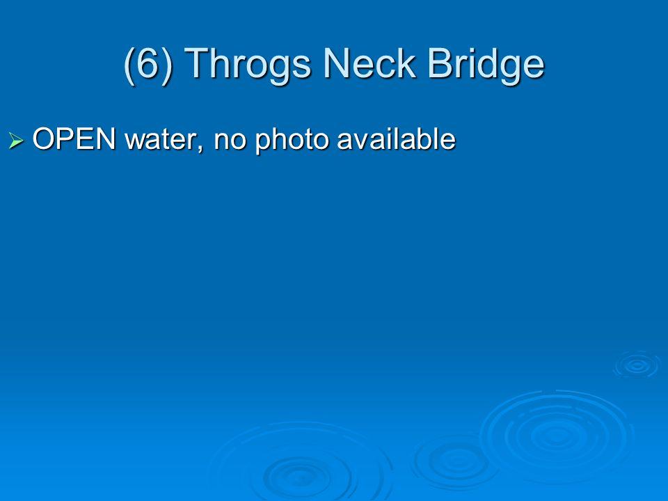 (6) Throgs Neck Bridge  OPEN water, no photo available