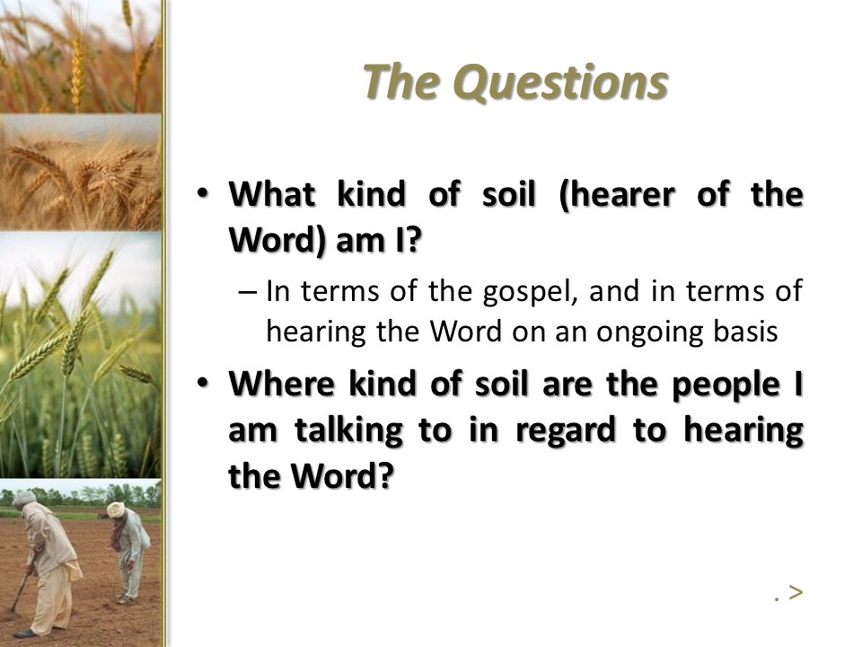 The Questions What kind of soil (hearer of the Word) am I? What kind of soil (hearer of the Word) am I? – In terms of the gospel, and in terms of hear
