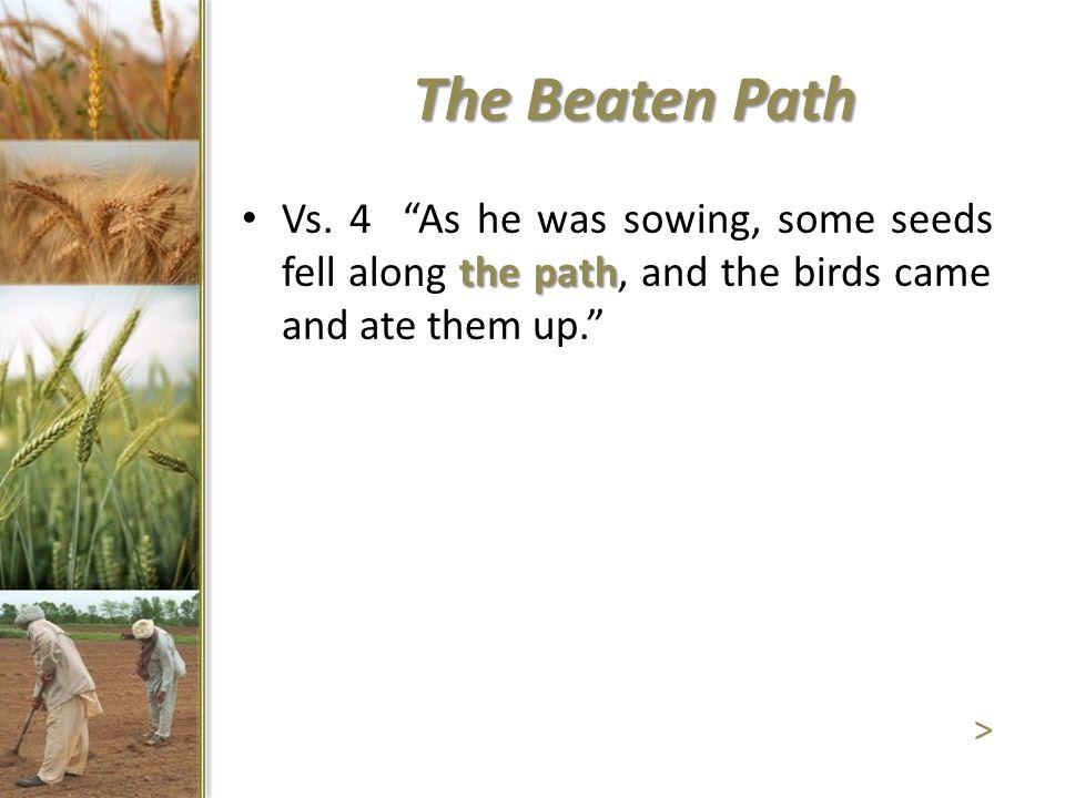 The Beaten Path the path Vs.