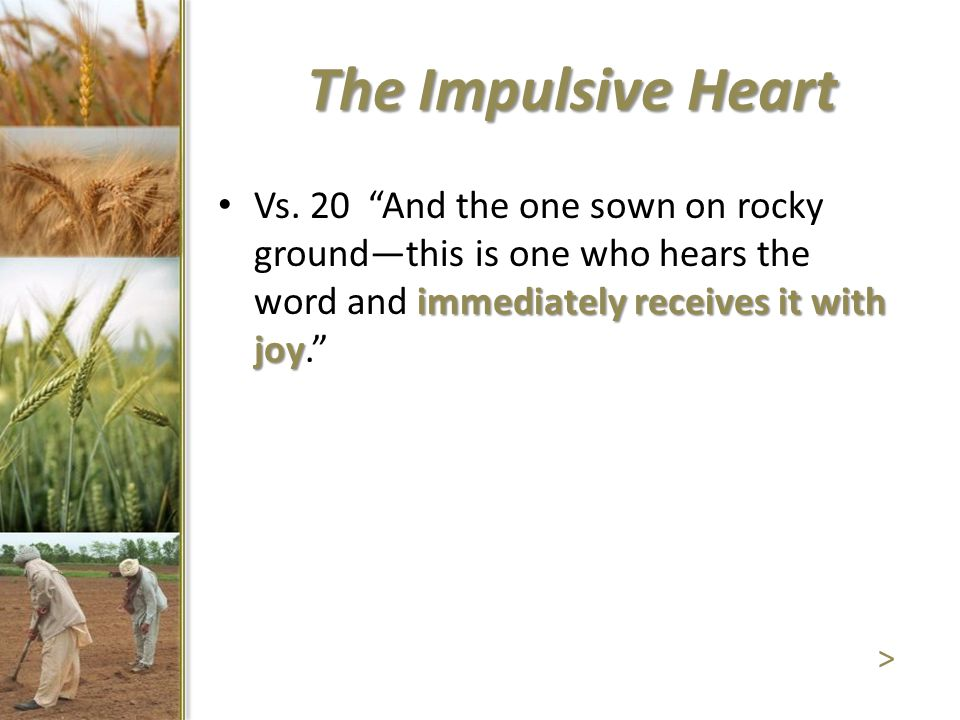 """The Impulsive Heart immediately receives it with joy Vs. 20 """"And the one sown on rocky ground—this is one who hears the word and immediately receives"""