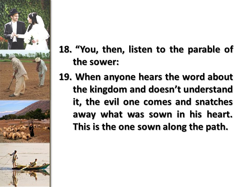 """18. """"You, then, listen to the parable of the sower: 19. When anyone hears the word about the kingdom and doesn't understand it, the evil one comes and"""