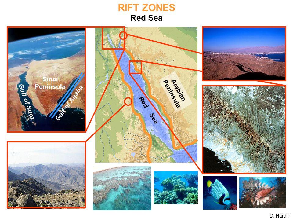 RIFT ZONES Red Sea Gulf of Suez Sinai Peninsula Gulf of Aqaba Red Sea Arabian Peninsula D. Hardin