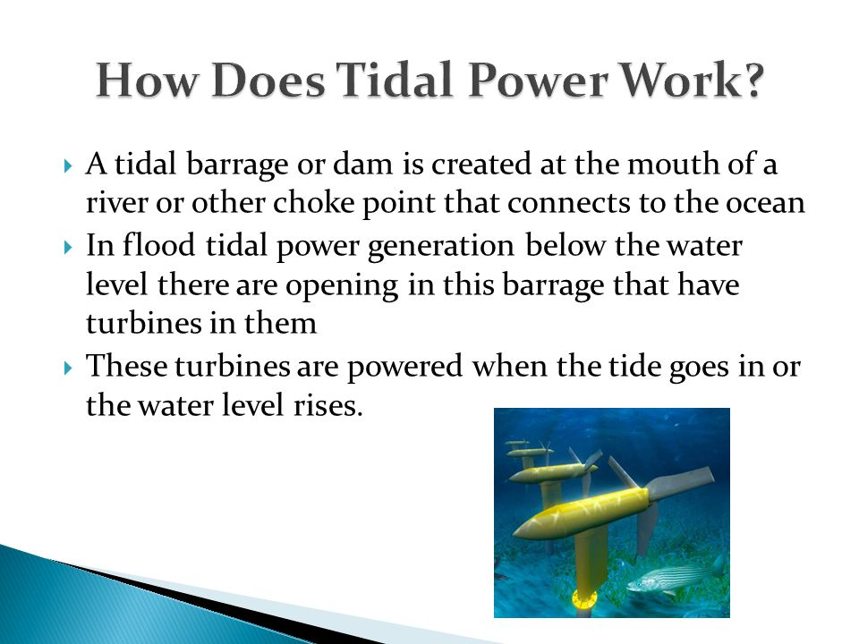  A tidal barrage or dam is created at the mouth of a river or other choke point that connects to the ocean  In flood tidal power generation below th