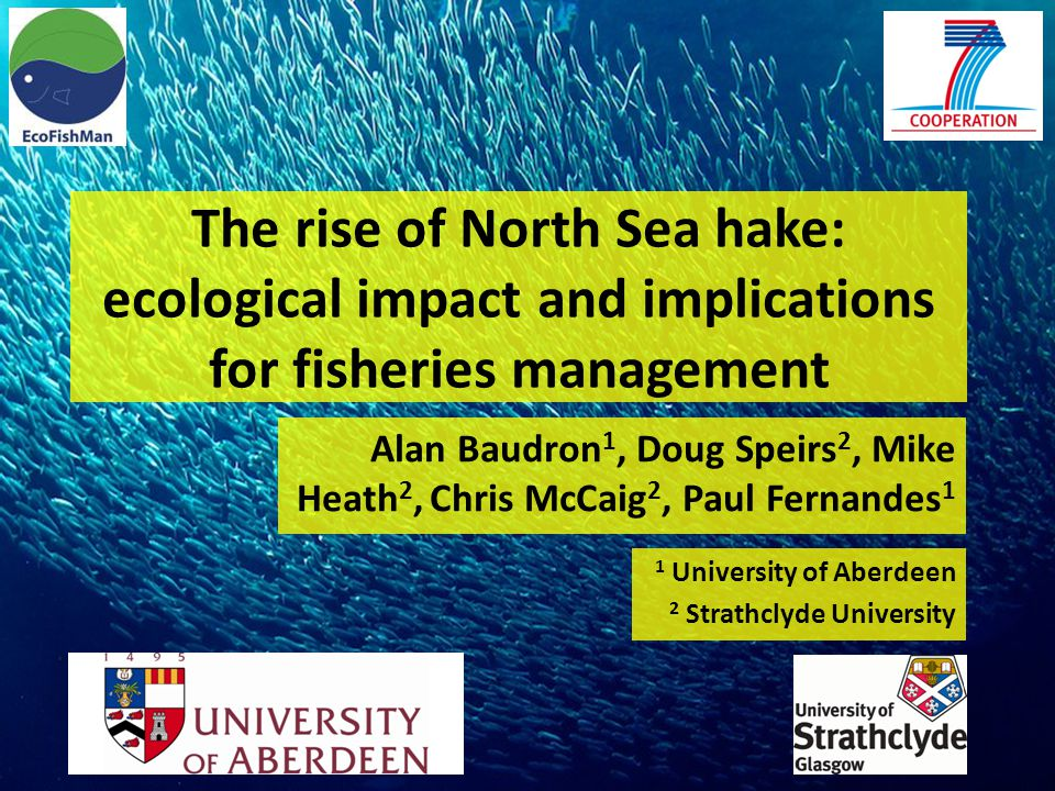 The rise of North Sea hake: ecological impact and implications for fisheries management Alan Baudron 1, Doug Speirs 2, Mike Heath 2, Chris McCaig 2, Paul Fernandes 1 1 University of Aberdeen 2 Strathclyde University