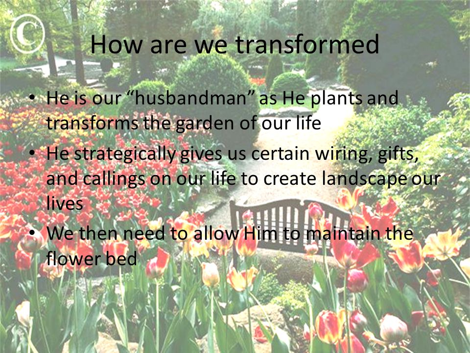 How are we transformed He is our husbandman as He plants and transforms the garden of our life He strategically gives us certain wiring, gifts, and callings on our life to create landscape our lives We then need to allow Him to maintain the flower bed