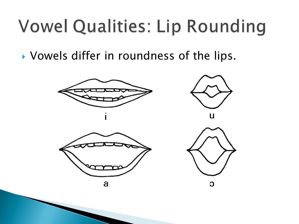  Vowels differ in roundness of the lips.