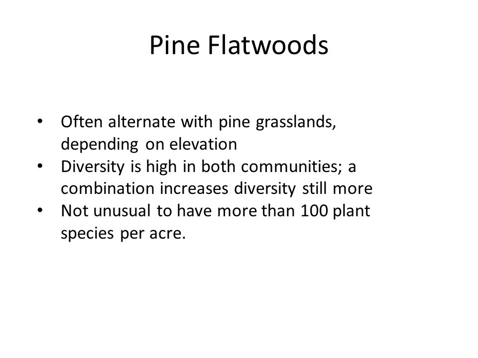 Pine Flatwoods Often alternate with pine grasslands, depending on elevation Diversity is high in both communities; a combination increases diversity s