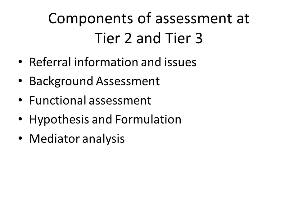 Components of assessment at Tier 2 and Tier 3 Referral information and issues Background Assessment Functional assessment Hypothesis and Formulation M