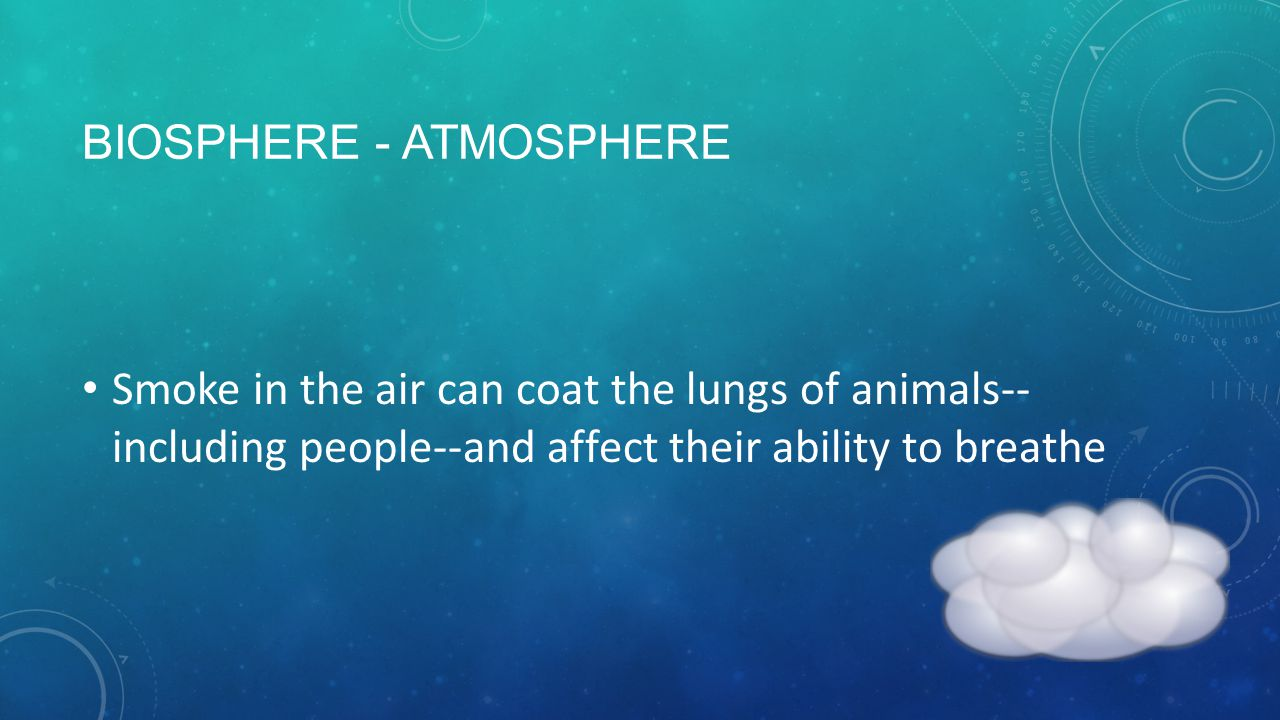 BIOSPHERE - ATMOSPHERE Smoke in the air can coat the lungs of animals-- including people--and affect their ability to breathe