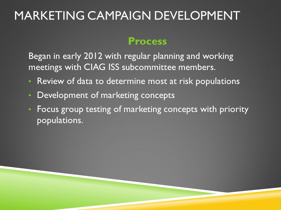 MARKETING CAMPAIGN DEVELOPMENT Process Began in early 2012 with regular planning and working meetings with CIAG ISS subcommittee members. Review of da