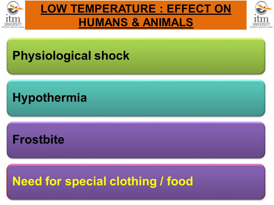LOW TEMPERATURE : EFFECT ON HUMANS & ANIMALS Physiological shockHypothermiaFrostbite Need for special clothing / food