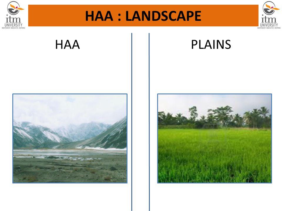 HAA PLAINS HAA : LANDSCAPE