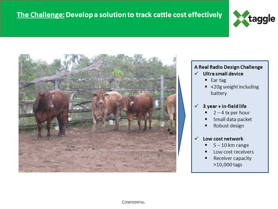 C ONFIDENTIAL The Challenge: Develop a solution to track cattle cost effectively A Real Radio Design Challenge Ultra small device  Ear tag  <20g weight including battery 3 year + in-field life  2 – 4 tx per hour  Small data packet  Robust design Low cost network  5 – 10 km range  Low cost receivers  Receiver capacity >10,000 tags