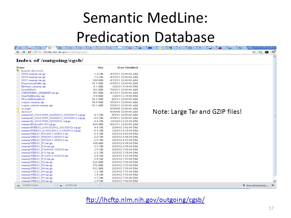 Semantic MedLine: Predication Database 17 ftp://lhcftp.nlm.nih.gov/outgoing/cgsb/ Note: Large Tar and GZIP files!