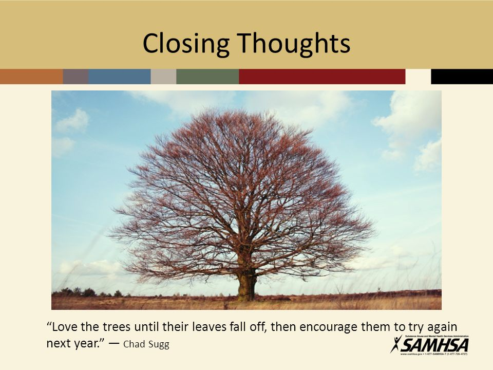 Closing Thoughts Love the trees until their leaves fall off, then encourage them to try again next year. ― Chad Sugg