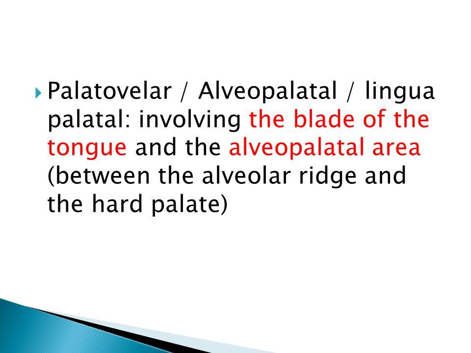  Palatovelar / Alveopalatal / lingua palatal: involving the blade of the tongue and the alveopalatal area (between the alveolar ridge and the hard palate)