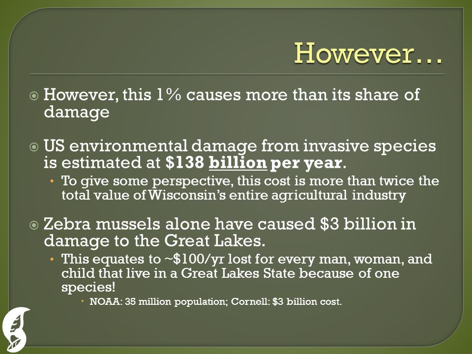  However, this 1% causes more than its share of damage  US environmental damage from invasive species is estimated at $138 billion per year.