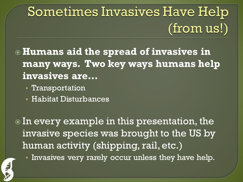  Humans aid the spread of invasives in many ways.