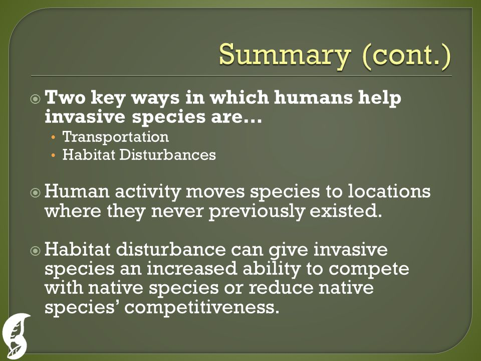  Two key ways in which humans help invasive species are… Transportation Habitat Disturbances  Human activity moves species to locations where they never previously existed.