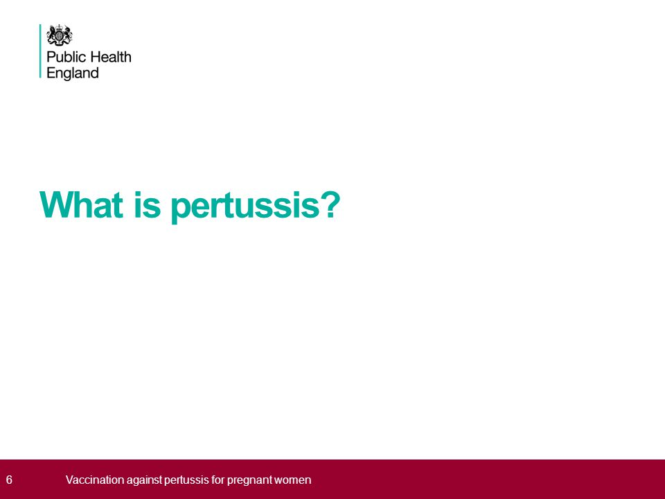 What is pertussis 6Vaccination against pertussis for pregnant women