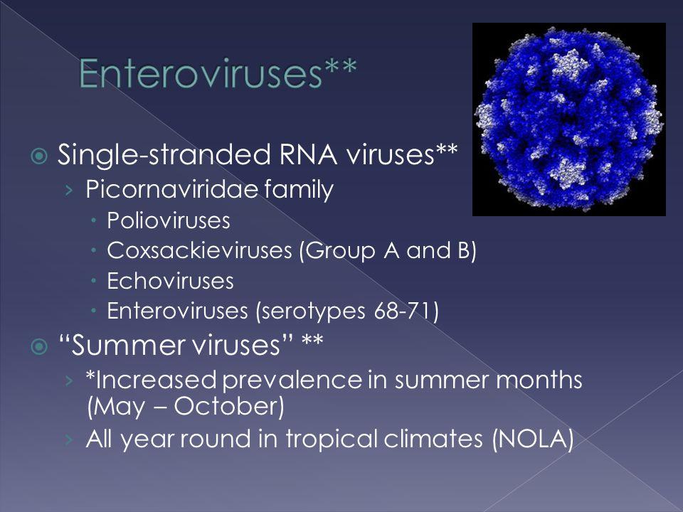  Single-stranded RNA viruses** › Picornaviridae family  Polioviruses  Coxsackieviruses (Group A and B)  Echoviruses  Enteroviruses (serotypes 68-